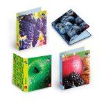 PIGNA A/4 gyűrűskönyv különféle mintákkal. Fruits